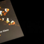 """Accueil Collection """"Extrema Silver Glass"""" - FLUKSO"""